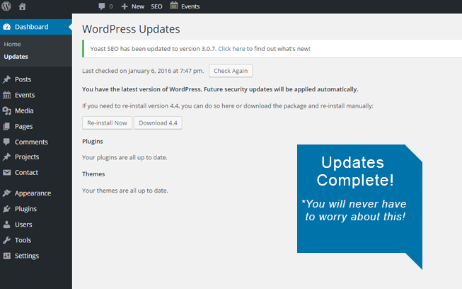 wordpress update maintenance