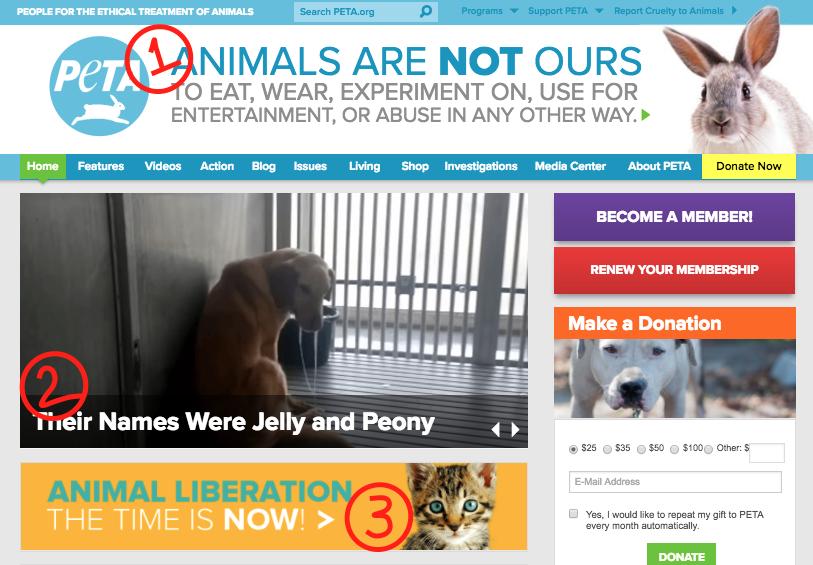 PETA website using copywriting formula PAS
